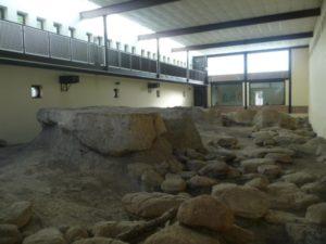 Il Museo Pleistocenico di Rebibbia - Casal de' Pazzi